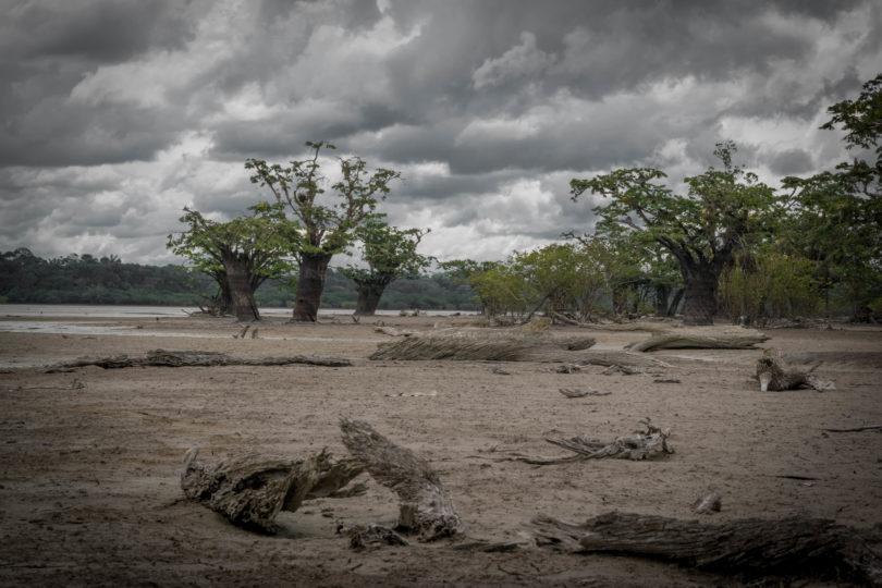 Život v Amazonii